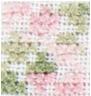 462_Color_Ancolie des jardins