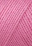 1551_Color_rose tulipe 0119