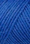 1557_Color_bleu roi 006