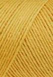 1566_Color_jaune moutarde 0250